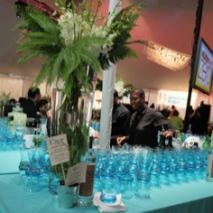 Celebrate Brooklyn Opening Night Gala 2010