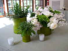The Picnic House in Prospect Park - potted & floral centerpiece