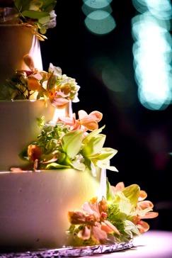 bbg.cake