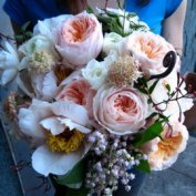 garden rose bouquet:juliette
