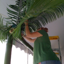 kQ. working the palm fronds @ Celebrate Brooklyn Opening Night Gala 2009