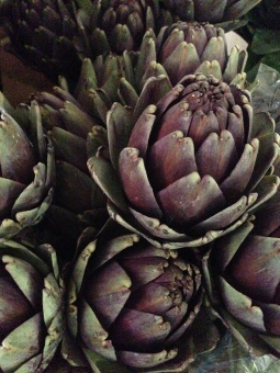 hmmm artichokes… not just for dinner.