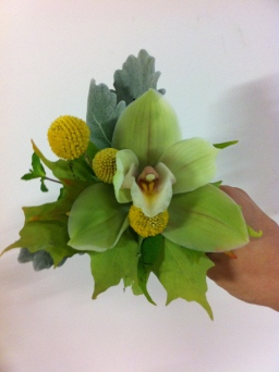 light green cymbidium orchid corsage with craspedia accent