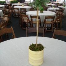 table setting @ Celebrate Brooklyn Opening Night Gala 2009